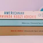 Por que ler Chimamanda Ngozi Adichie