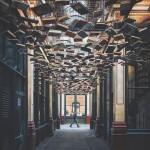 O cânone e a biblioteca de histórias não contadas